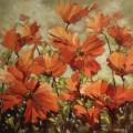 Ann Willsie Icelandic Poppies 36X36