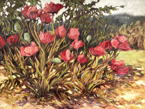 Ann Willsie Wild Poppies 30x40